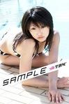 sample2s.jpg